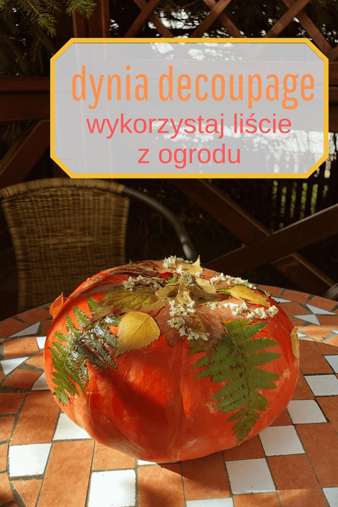 dynia decoupage